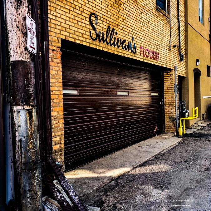 1193 Sullivan's Alley